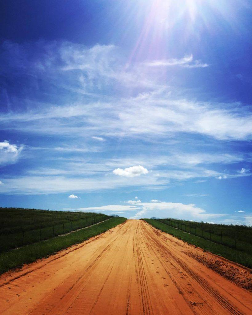 Flat clay roads of Florida.