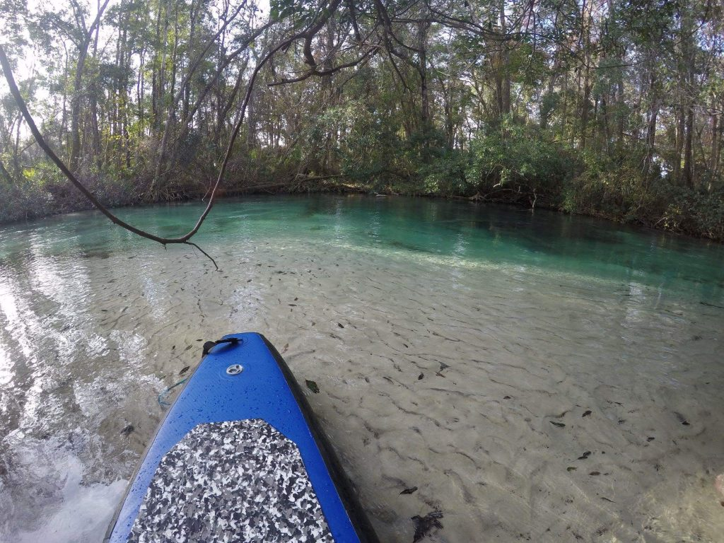 Paddle board pulled off on a white sandy beach along the Weeki Wachee Springs.