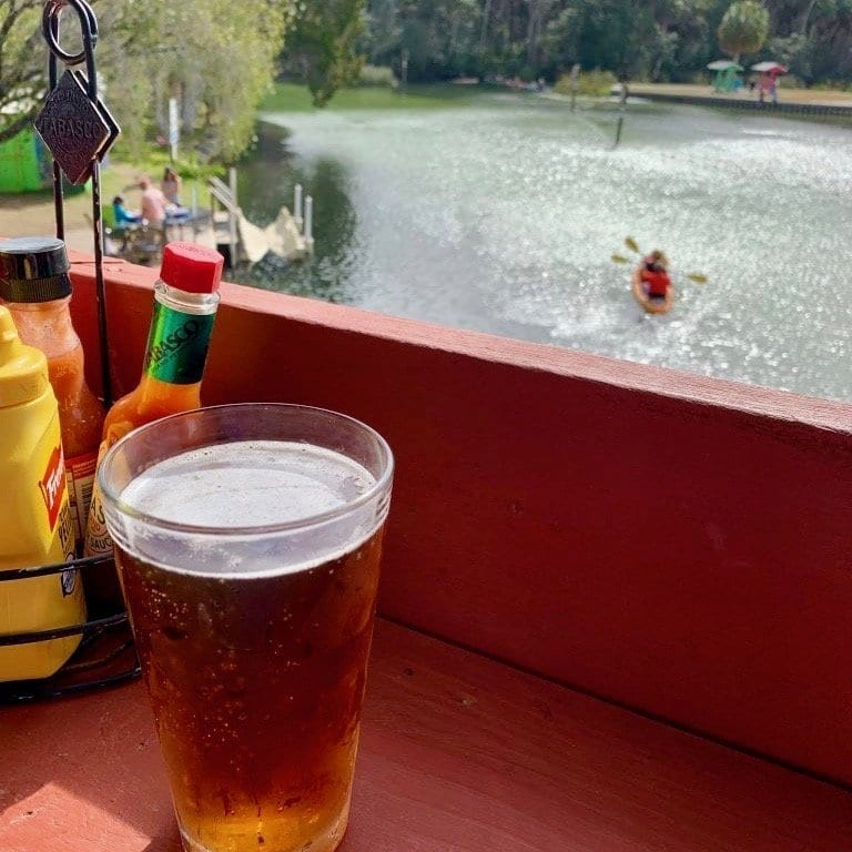 A beer overlooking a kayaker along the Weeki Wachee River.