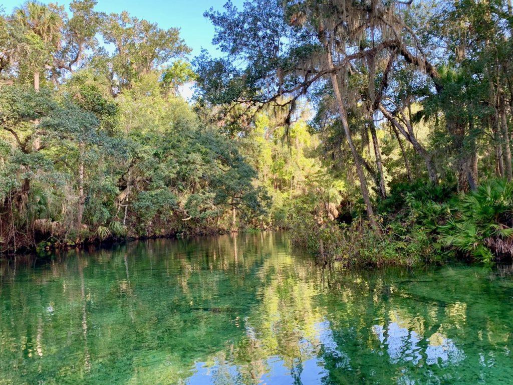 Looking downstream while kayaking Blue Springs