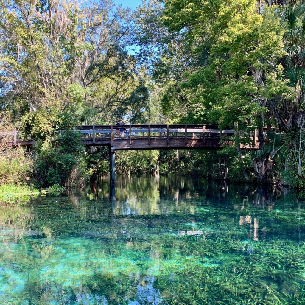 A bridge crosses over the Silver Springs Kayaking Run.