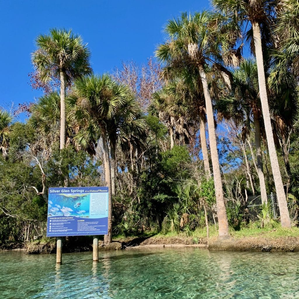 Entrance to Silver Glen Springs in the Ocala National Forest, Florida.