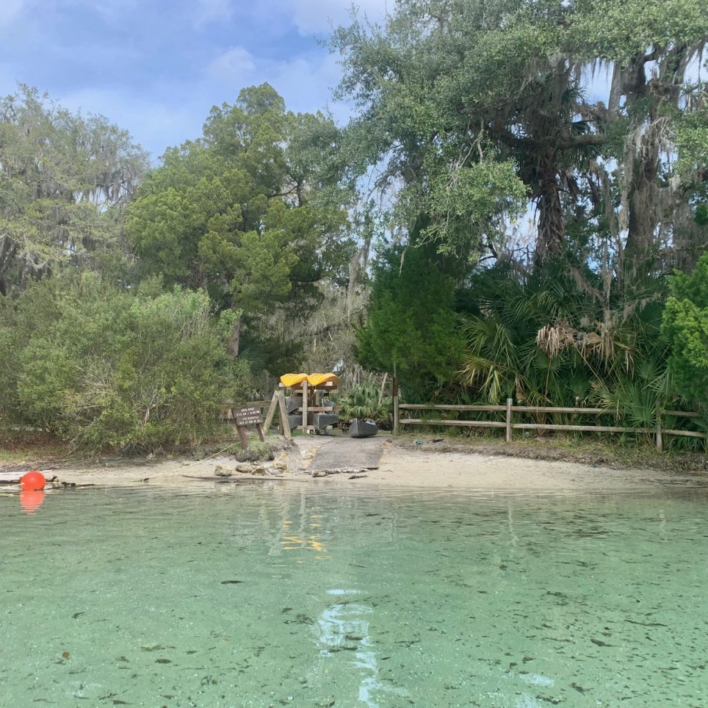 Kayak launch area at Silver Glen Springs in the Ocala National Forest, Florida.