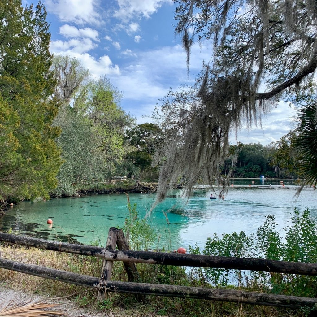 Swimming area at Silver Glen Springs in the Ocala National Forest, Florida.