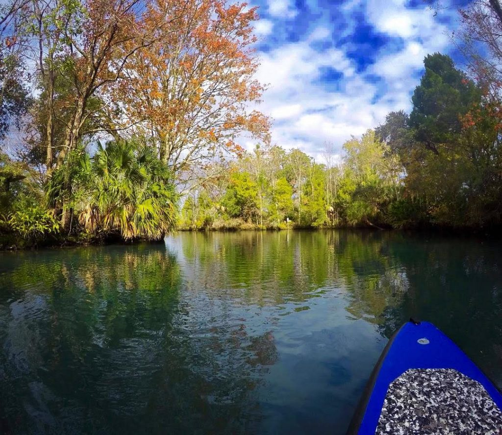 The paddle towards the Three Sisters Spring for a swimming with manatees in Crystal River experience.
