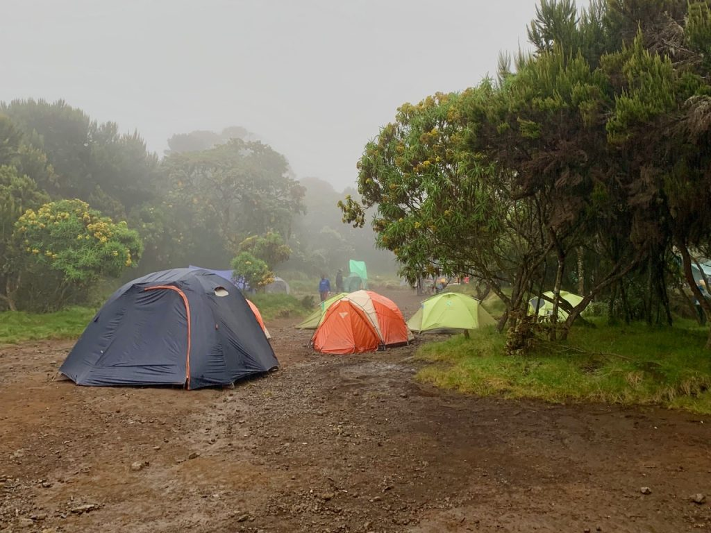 A few tents set up under the dense fog at Machame camp.