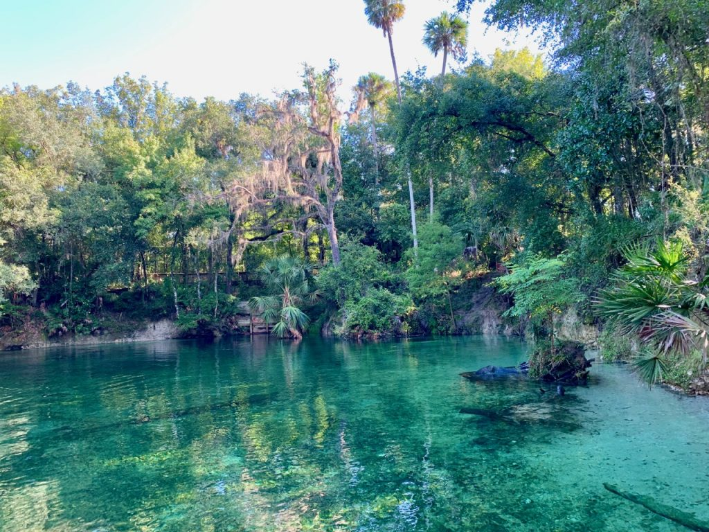 The headspring of Blue Springs State Park
