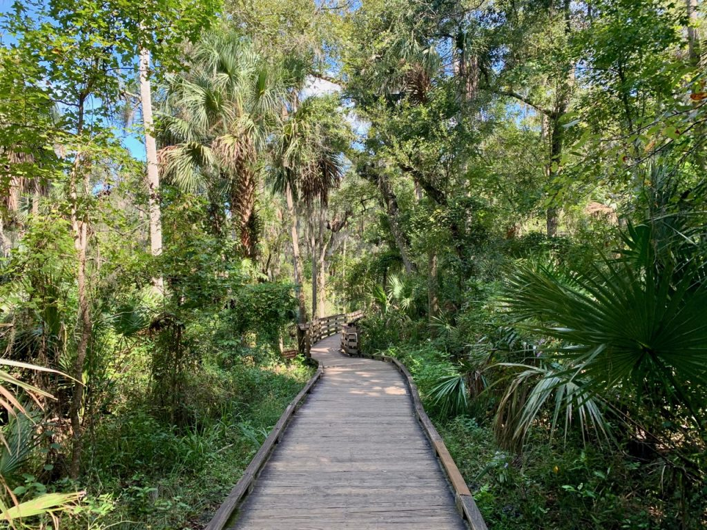 Boardwalk along Blue Springs