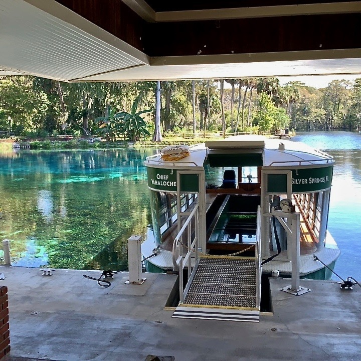 A look inside the glass-bottom boat at Silver Springs State Park.