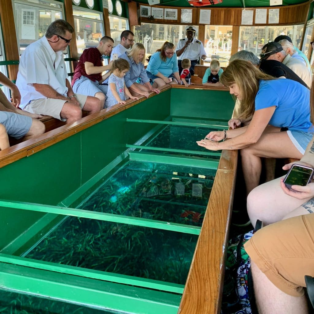 A view of the design of the glass-bottom boat at Silver Springs State Park.