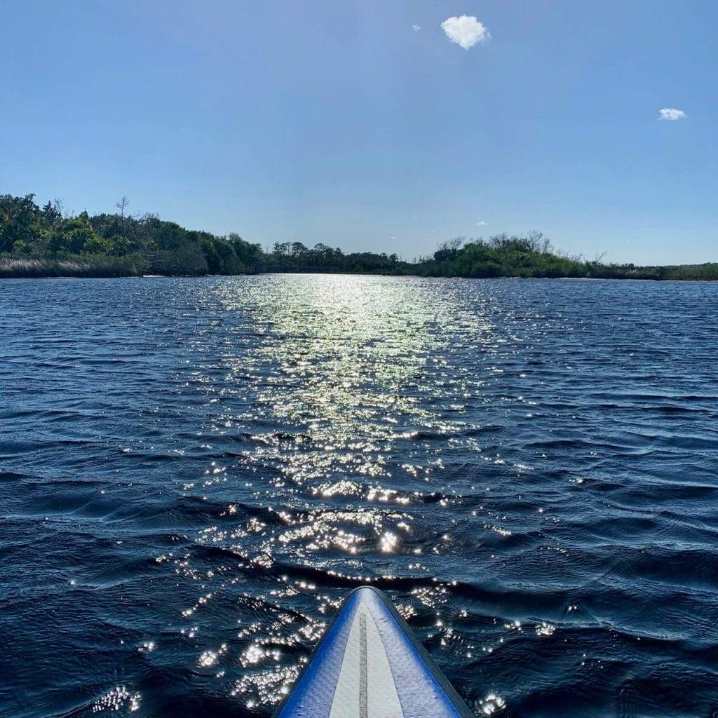 The view from a paddle board while kayaking Tomoka State Park.