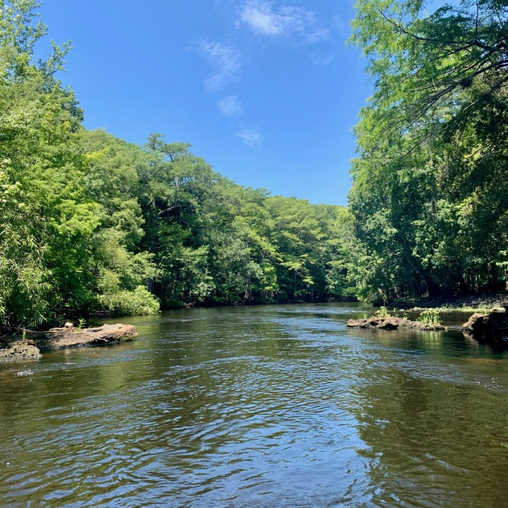 Withlacoochee River.
